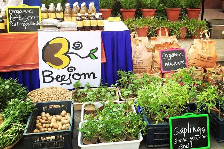 Earth Collective Market Organic & Natural Lifestyle Market